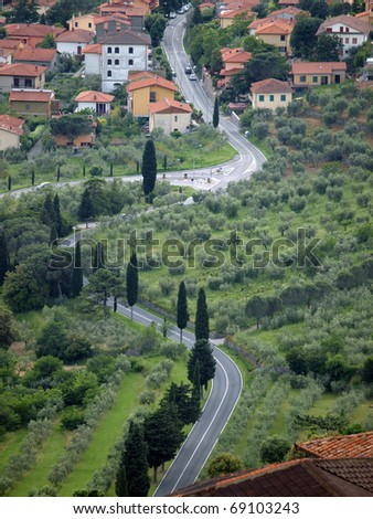 typical Tuscan landscape with olive groves and cypress trees - stock photo