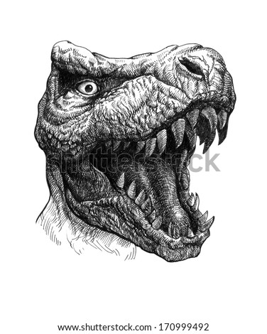 Tyrannosaurus Dinosaur. Hand drawn. Jpeg version. - stock photo