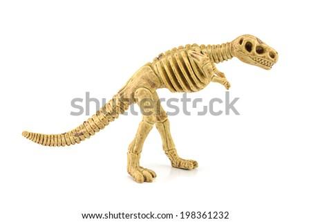 Tyrannosaurus rex fossil skeleton toy isolated on white. - stock photo