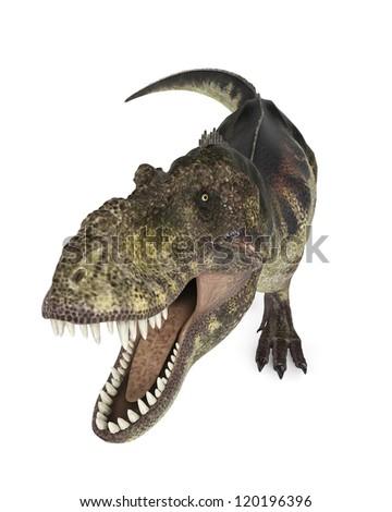 tyrannosaurus rex ready - stock photo