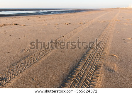 Tyre tracks going off into the distance on a golden sandy beach at sunset