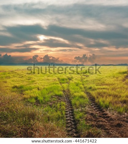 Tyre tracks way path on grassland with rainy season cloud and sunset, off road way to natural grass field,