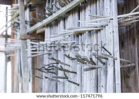 tyrolean wood arrangement of rods for drying grass to hay hanging at hut