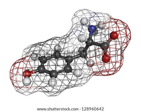 Tyrosine (Tyr, Y) amino acid, molecular model. Amino acids are the building blocks of all proteins. Atoms are represented as spheres with conventional color coding: hydrogen (white), carbon (grey),etc - stock photo