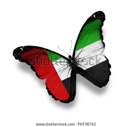 UAE flag butterfly, isolated on white - stock photo