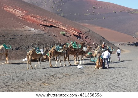 UGA, LANZAROTE, SPAIN  March 15, 2016: Some tourists on the back of camels are ready for a trip through the desert. In Timanfaya National Park, Lanzarote, Canary Islands, Spain. - stock photo