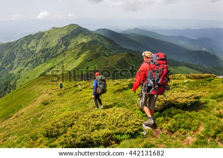 Ukraine. Carpathian mountains. A group of tourists with big backpacks
