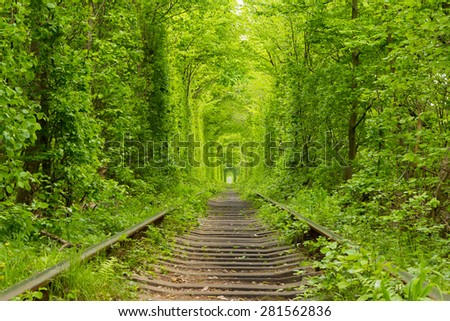 "Ukraine. Spring. Railway in the dense deciduous forest. ""Tunnel Of Love"" - stock photo"