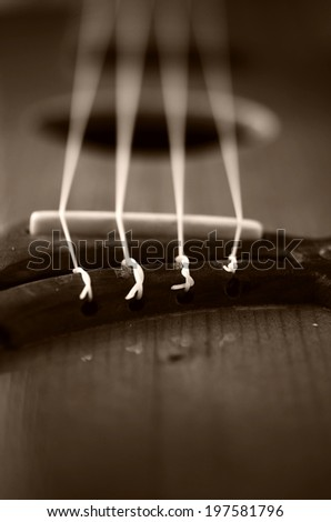 Ukulele fretboard, part of ukulele hawaiian guitar  - stock photo