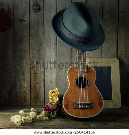 Ukulele musical instrument still life photography art - stock photo