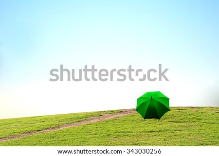 umbrella on the grass - stock photo