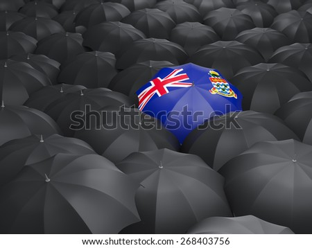 Umbrella with flag of cayman islands over black umbrellas - stock photo