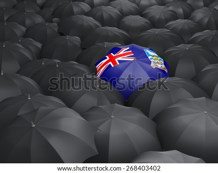 Umbrella with flag of falkland islands over black umbrellas - stock photo