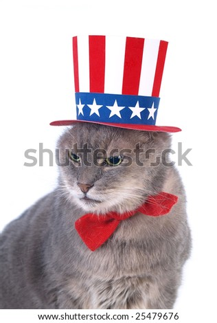 Uncle Sam - stock photo