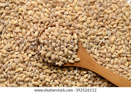 Uncooked barley grain seeds close up shot