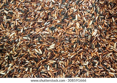 Uncooked brown rice grains background - stock photo