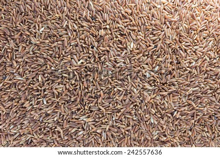 Uncooked brown rice grains white background. - stock photo