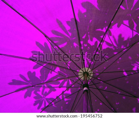 Under a purple Oriental Umbrella with abstract leaf - stock photo