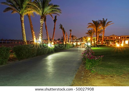 Under palm trees at night - stock photo