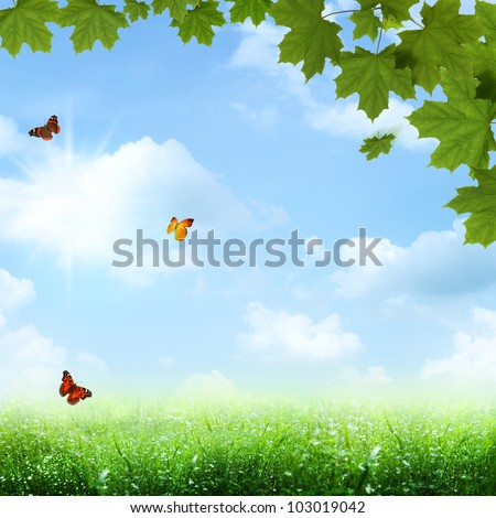 Under the blue skies. spring and summer backgrounds - stock photo