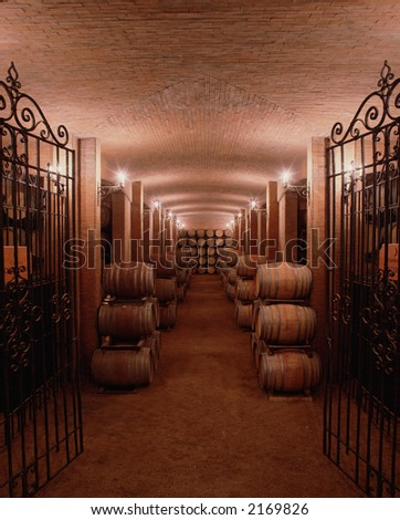Underground of a winery, showing lots of barrels