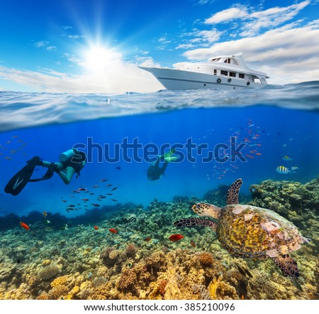 Underwater coral reef with scuba divers - stock photo