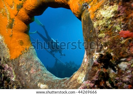 Underwater photographer by wreck - stock photo
