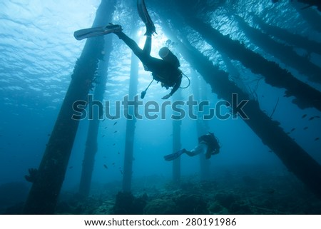 Underwater scuba divers beneath pier in tropical water