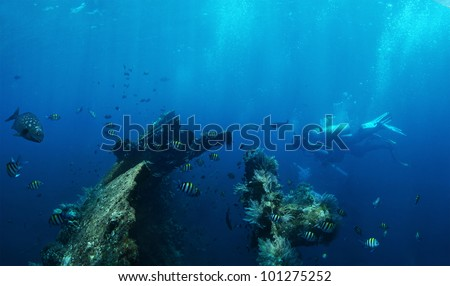 Underwater shoot of group of a divers exploring ship wreck USAT Liberty. Bali, Indonesia - stock photo
