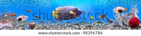 Underwater world - panorama - stock photo