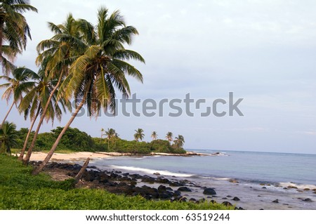 undeveloped Caribbean beach palm trees Content Point Big Corn Island Nicaragua Central America - stock photo