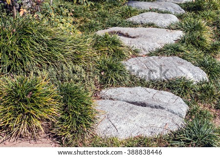 Uneven stepping stones in grass. Large gray flat rocks, different shapes. Focus is mostly on the foreground. Low angle close up view.  - stock photo