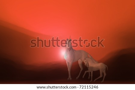 Unicorns - stock photo