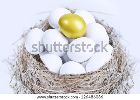 Unique golden egg on top of white eggs inside a nest, isolated on white - stock photo