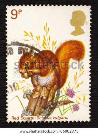 UNITED KINGDOM - CIRCA 2000: A stamp printed in United Kingdom shows badger meles, circa 2000