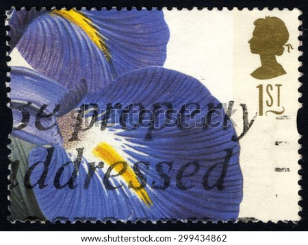 UNITED KINGDOM - CIRCA 1997: A stamp printed in United Kingdom shows 19th Century Flower Painting, Iris Latifolia (Ehret), circa 1997 - stock photo