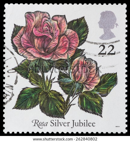 UNITED KINGDOM - CIRCA 1991: A used postage stamp printed in Britain showing Silver Jubilee Rose Flower - stock photo