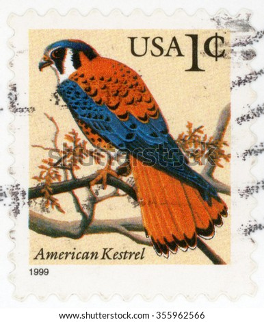 UNITED STATES - CIRCA 1999: post stamp printed in USA (US) shows American kestrel (sparrow hawk); raptor; bird of prey sitting on branch; Scott 3031 A1841 1c; circa 1999 - stock photo