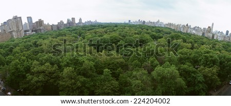 United States, New York, Central Park, treetops with skyline in background, panoramic view - stock photo