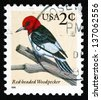 UNITED STATES OF AMERICA - CIRCA 1996: a stamp printed in the USA shows Red-headed Woodpecker, Melanerpes Erythrocephalus, Bird, circa 1996 - stock photo