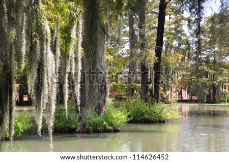 University Of Louisiana Bayou 001 - stock photo