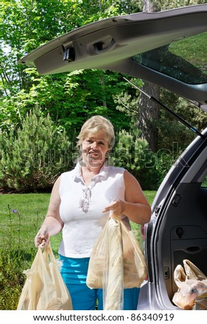Unpacking grocery bags from the back of the car - stock photo