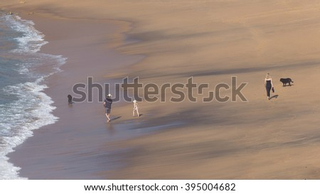 unrecognizable happy family with a young daughter and two black dogs, walks along the beautiful sandy beach, and the waves lapping on the beach in Australia - stock photo