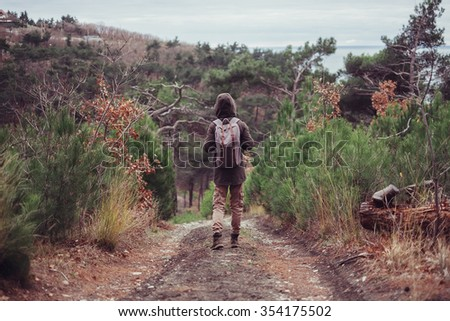 Unrecognizable hiker with backpack walking on path among green pine-trees, rear view - stock photo