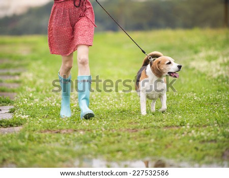 Unrecognizable young woman in dress and blue wellies walk her beagle dog in green nature - stock photo