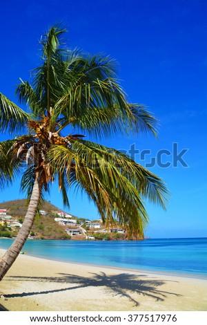 untouched caribbean beach at grenada,  - stock photo