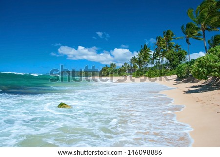 Untouched sandy beach with palms trees and azure ocean in background - stock photo