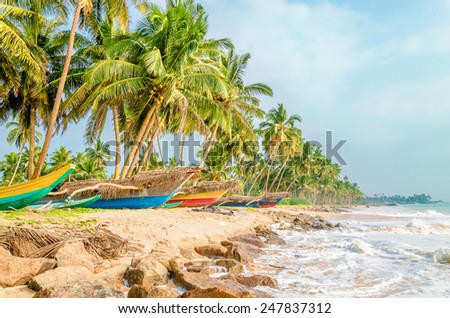 Untouched tropical beach with palms and fishing boats in Sri Lanka, Asia - stock photo