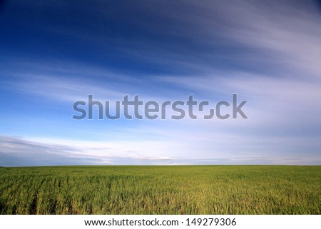 unusual field and sky - stock photo