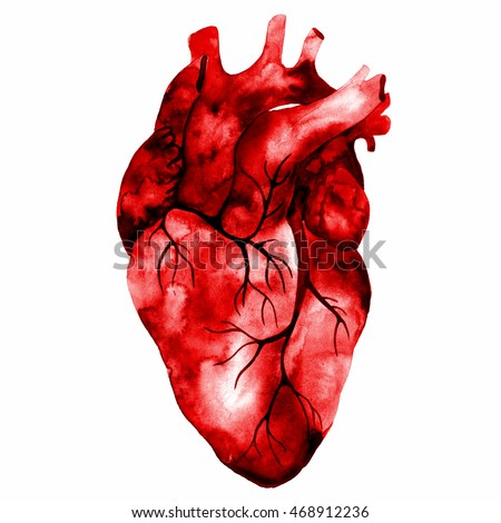 Unusual human heart. Hand drawn watercolor illustration. Raster illustration for your design.